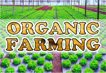 organic-farming-2019-pendulumias-mob.jpg